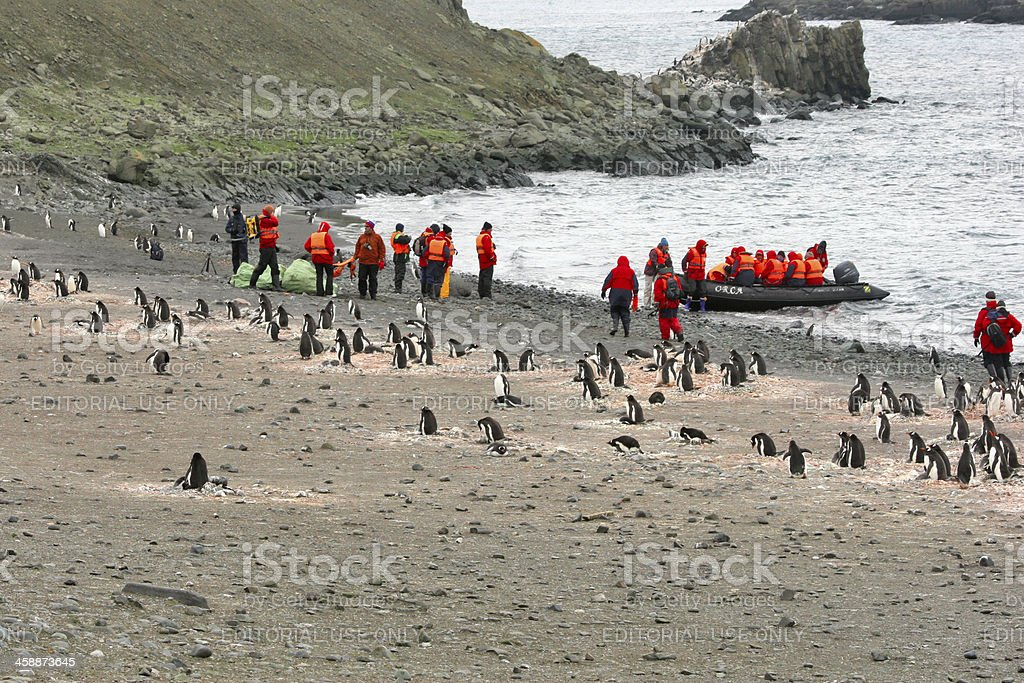 Antarctica: tourists land close to a penguin colony royalty-free stock photo