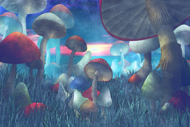antastic landscape with mushrooms and fog stock photo