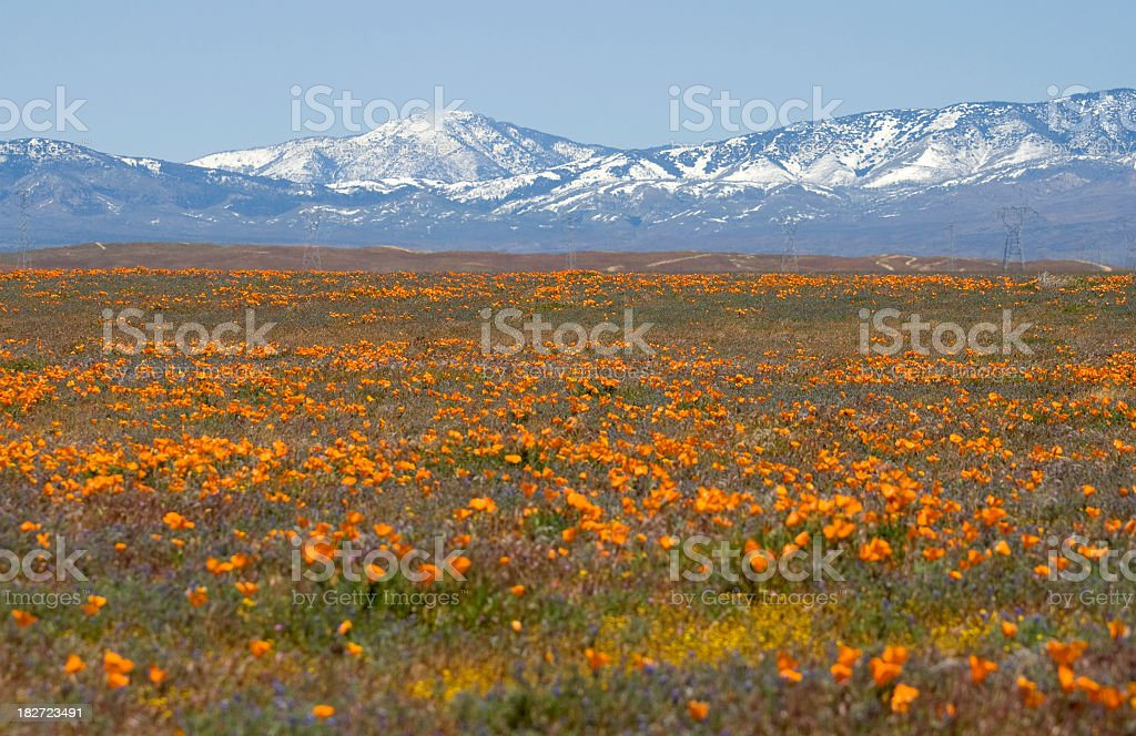 Antelope Valley royalty-free stock photo