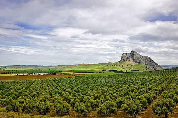 Antequera, Andalucia, Spain stock photo