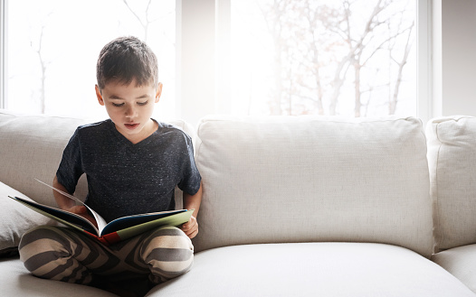 Shot of an adorable little boy reading a book while relaxing on the sofa at home