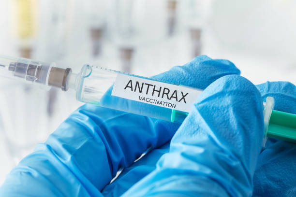 anthrax vaccination - antrace foto e immagini stock