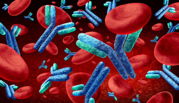 antibody  in the blood - anticorpo foto e immagini stock
