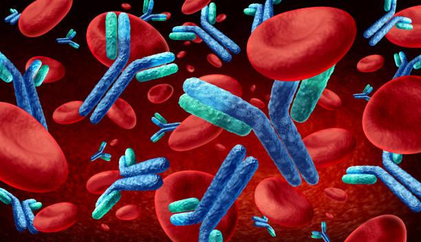 Antibody  In The Blood stock photo