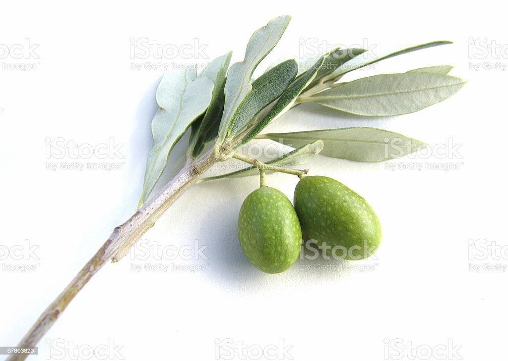 Antipasti - olives II royalty-free stock photo