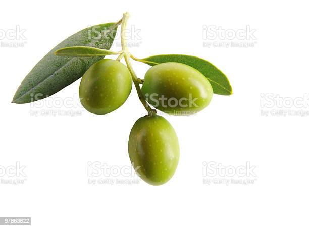 Antipasti olives isolated iii picture id97863822?b=1&k=6&m=97863822&s=612x612&h=2gelvl99rcwmxksd9h iahoso7ccvsxppwonpopshua=