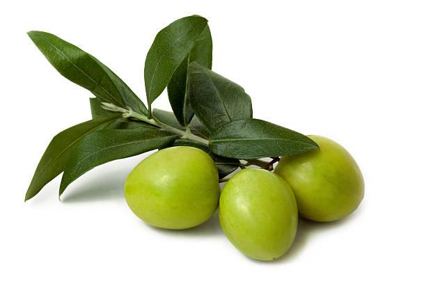 antipasti-olive isolato - ramoscello d'ulivo foto e immagini stock