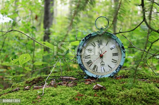 istock Antique alarm clock on a moss covered rock 859551354
