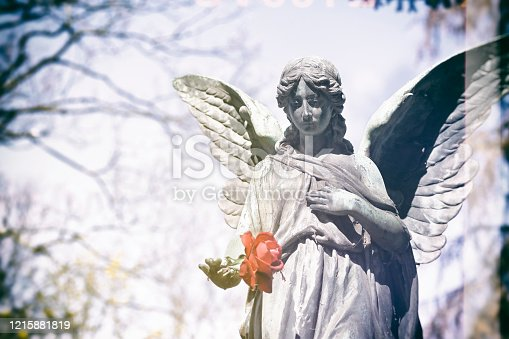 Weathered old angel statue with a rose on a cemetery in Germany