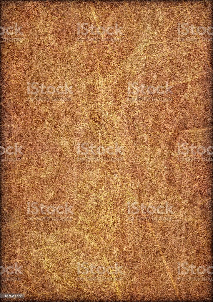 Antique Animal Skin Parchment Vignette Grunge Texture royalty-free stock photo