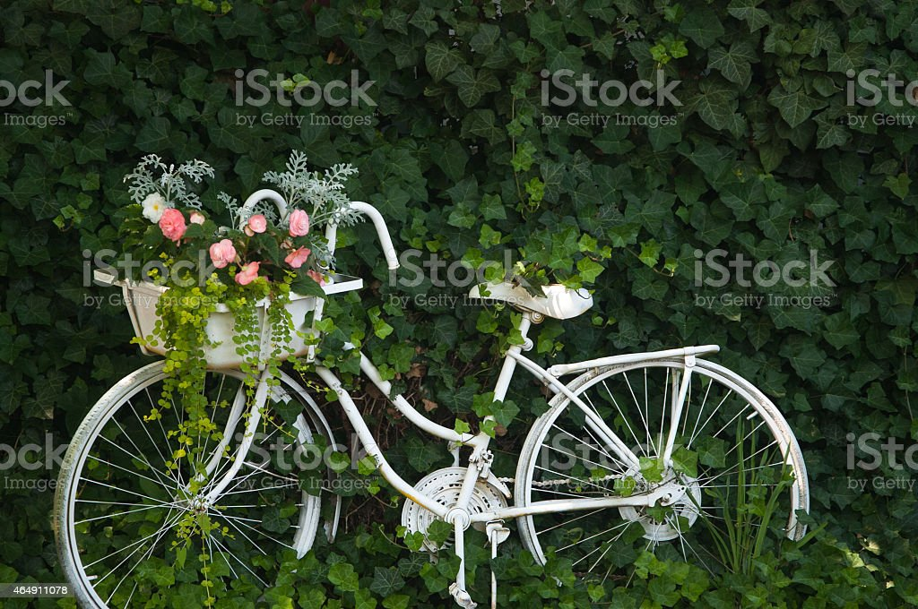 Antique bicycle stock photo