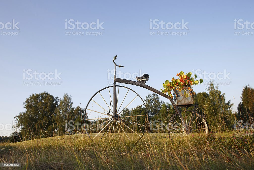 antique bike with flower pot on field stock photo