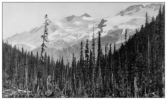 Antique black and white photo: Glacier of the Asulkan