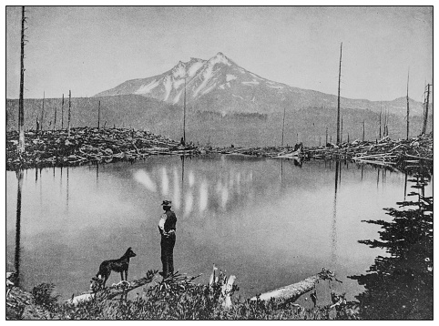 Antique black and white photo: Mount Jefferson from Grizzly Farm, Oregon