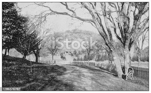 Antique black and white photo of the United States: California landscape