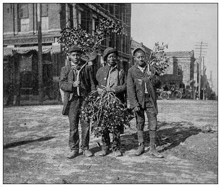 Antique black and white photo: Scenes in Georgia and Alabama