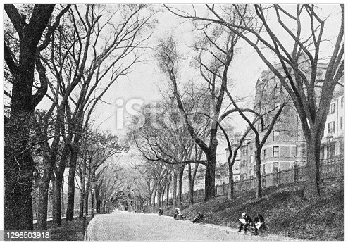 Antique black and white photograph of Boston, Massachusetts: Beacon Street Mall, The Common