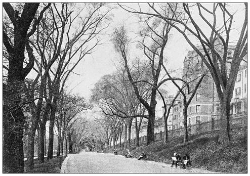 Antique black and white photograph of Boston, Massachusetts: Beacon Street Mall, The Common