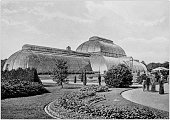 Antique black and white photograph of England and Wales: Great Palm House, Kew Gardens