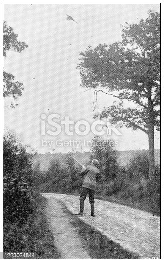 658114236 istock photo Antique black and white photograph of sport, athletes and leisure activities in the 19th century: Bird shooting 1223024844