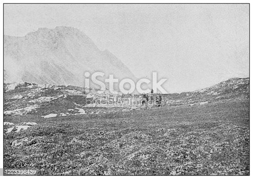 658114236 istock photo Antique black and white photograph of sport, athletes and leisure activities in the 19th century: Bighorn hunting in Canada, Rocky mountains 1223396439