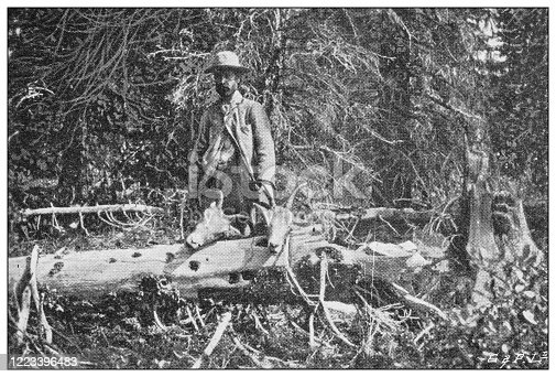 658114236 istock photo Antique black and white photograph of sport, athletes and leisure activities in the 19th century: Bighorn hunting in Canada, Rocky mountains 1223396483