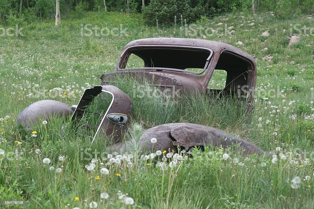 Antique car in a meadow royalty-free stock photo