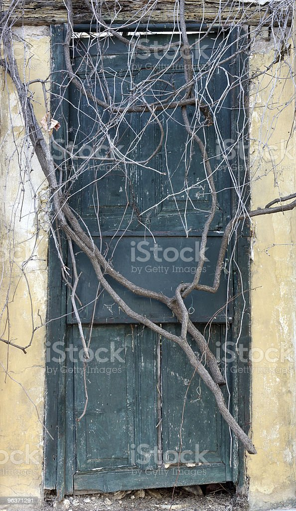 Antique door sealed by roots stock photo
