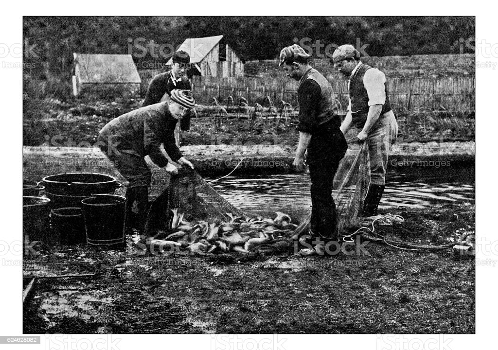Antique dotprinted photograph of Hobbies and Sports: Fish farming – Foto