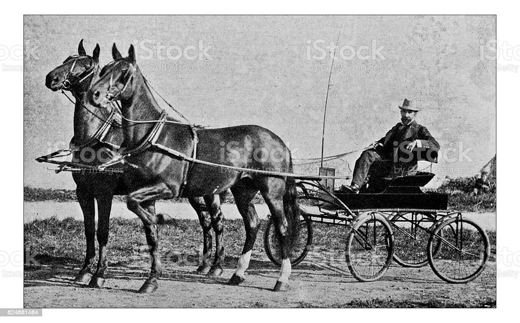 Antique dotprinted photograph of Hobbies and Sports: Trotting horse cart stock photo