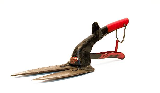 Antique garden clippers stock photo