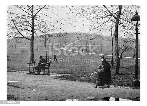 Antique London's photographs: Primrose hill