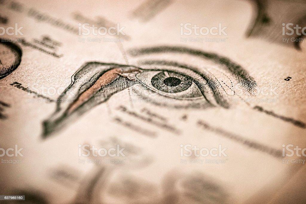 Antique medical book: Eye stock photo