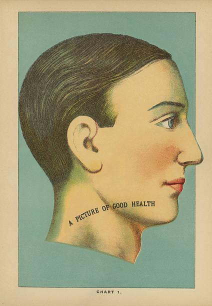 Antique Medical Illustration / Phrenology Head stock photo
