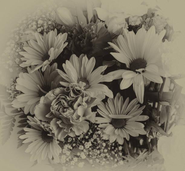 Antique monochrome flowers stock photo