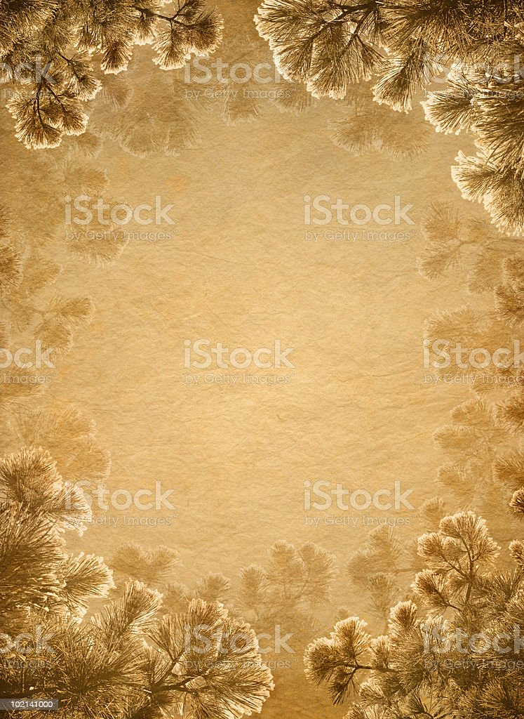 antique paper with pine frame royalty-free stock photo