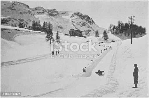 Antique photo: Tobogganing at St Moritz