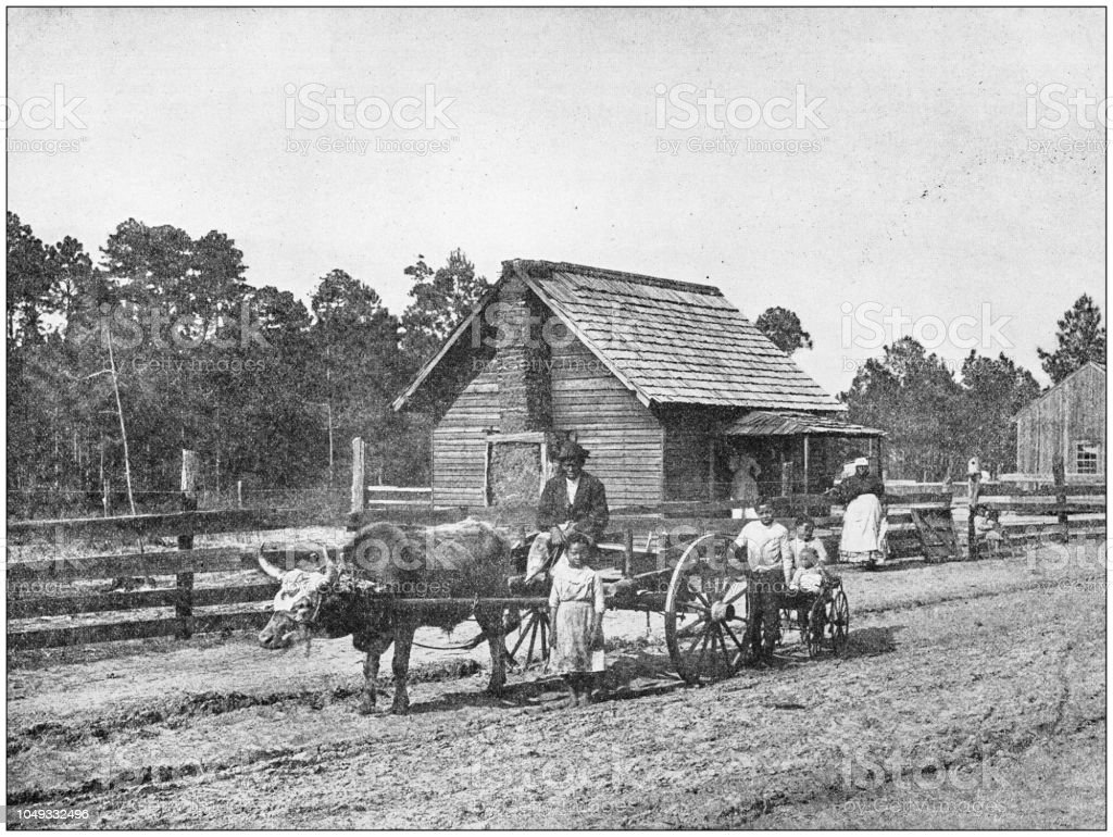Antique photograph: Farm in south USA stock photo