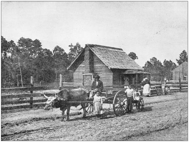 Antique photograph: Farm in south USA Antique photograph: Farm in south USA 19th century stock pictures, royalty-free photos & images