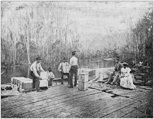Antique photograph: Loading oranges on the Ocklawaha, Florida, USA stock photo