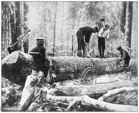 Antique photograph: Lumberjacks, River Ottawa, Canada