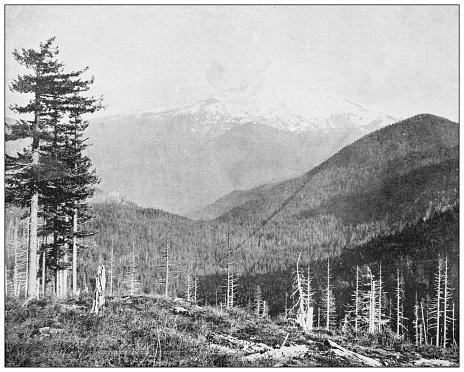 Antique photograph: Mount Hood, Oregon