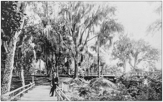 Antique photograph of America's famous landscapes: Bienville Park, Mobile, Alabama