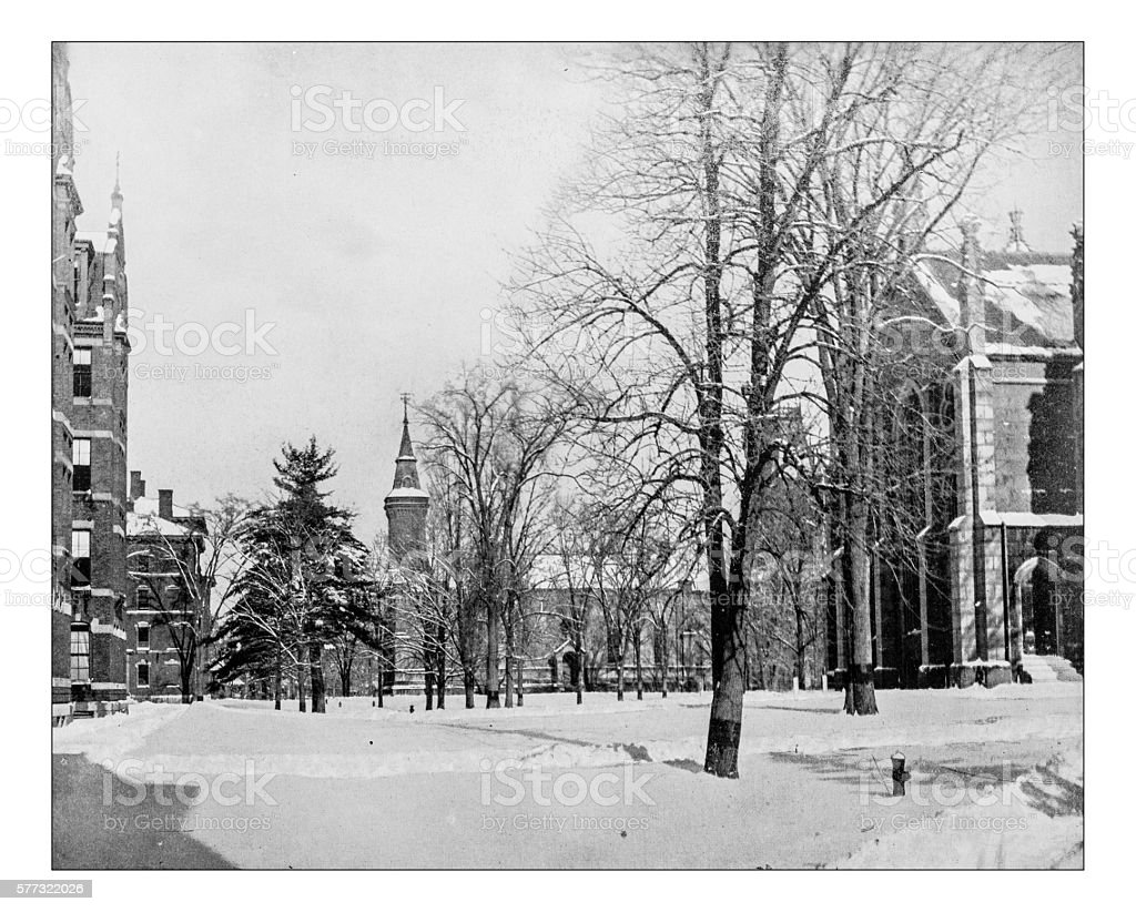 Antique Photograph Of Harvard University Campus Cambridge Massachusetts USA 19th Century