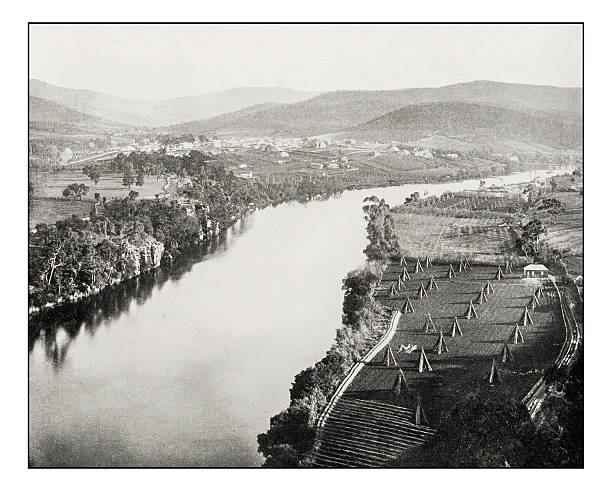 antique photograph of new norfolk, derwent river, tasmania - historic vs new stock photos and pictures
