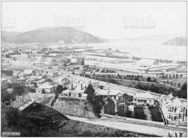 Antique photograph of World's famous sites: Dunedin