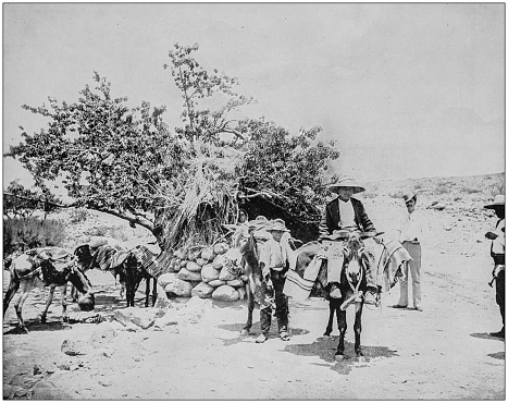 Antique photograph of World's famous sites: Mexican pack train, City of Mexico