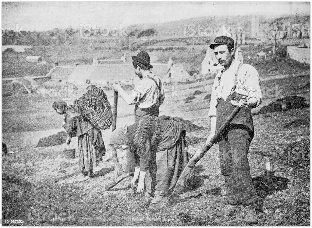 Antique photograph: Planting Potatoes in Skye stock photo