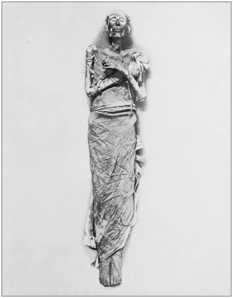 antike fotos von heilige land, ägypten und naher osten: mumie von ramses ii. - hochkönig stock-fotos und bilder