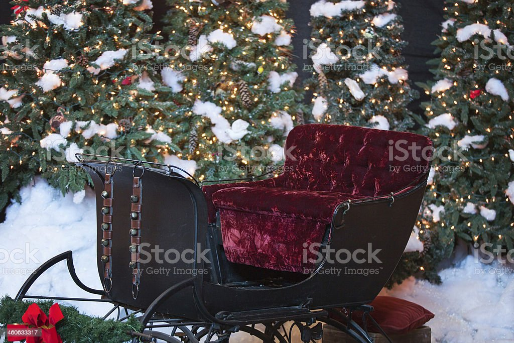 Antique Sleigh and Christmas Trees stock photo